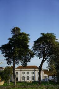 Palacio do grilo fachada 2