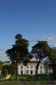 Palacio-do-grilo-fachada-6