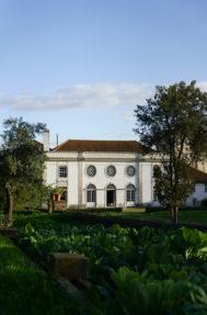 Palacio do grilo fachada 7