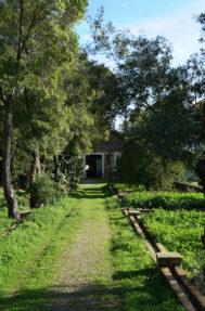 Palacio do grilo jardim 10