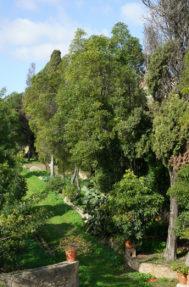 Palacio do grilo jardim 3