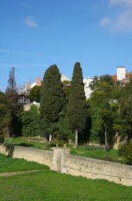 Palacio do grilo jardim 8