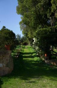 Palacio do grilo jardim 9